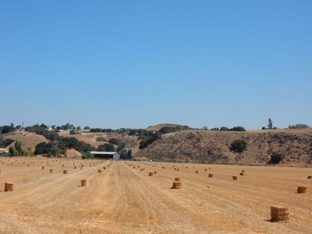 Napa Valley, Road trip, California, Arizona, US, Elisa N, Blog de Viajes, Costa Oeste de Estados Unidos