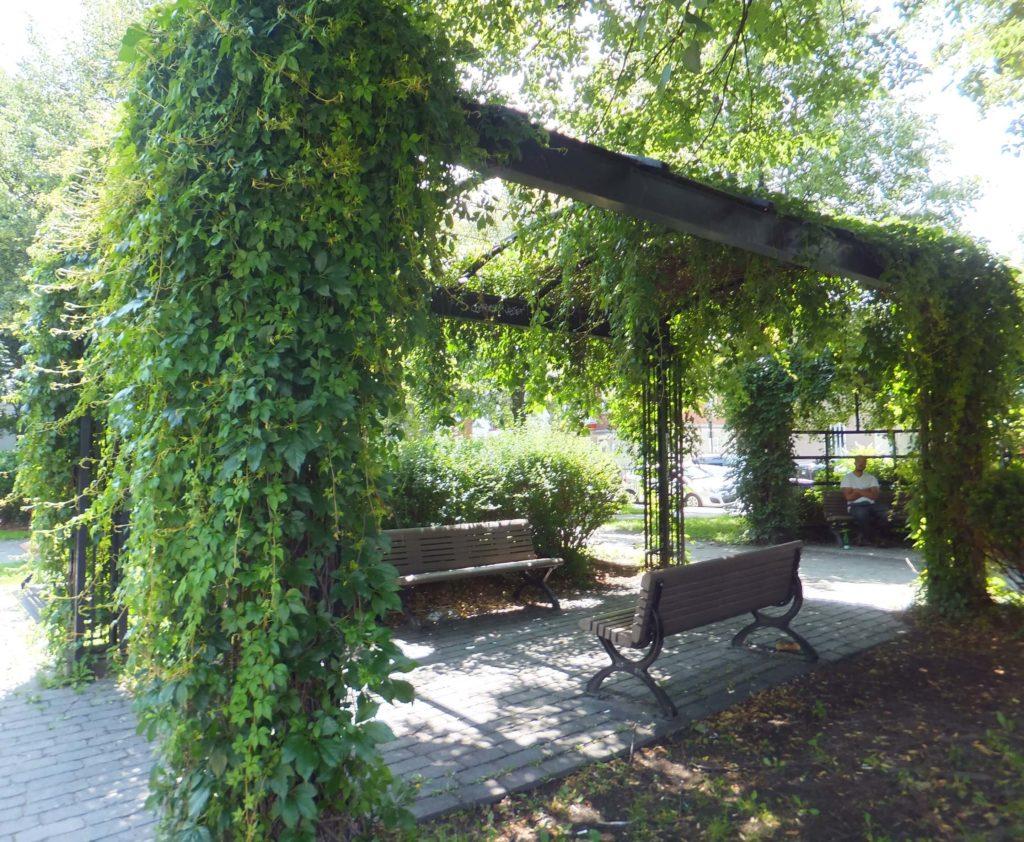 Qué hacer en Montréal: Outremont