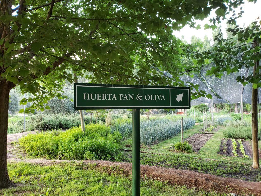 Bodega Zuccardi, Mendoza
