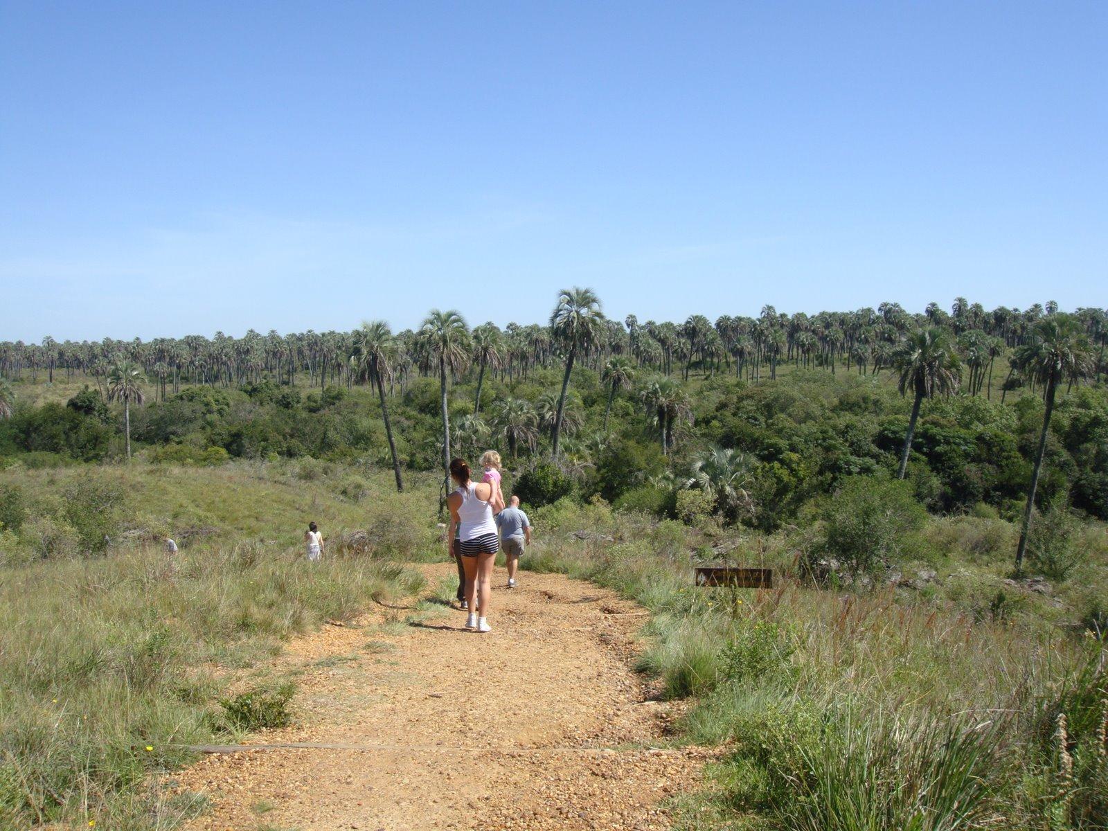 Parque Nacional El Palmar, en Entre Ríos