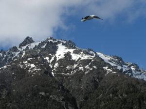 Lee más sobre el artículo Bariloche y sus alrededores