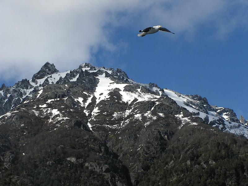 Bariloche y sus alrededores