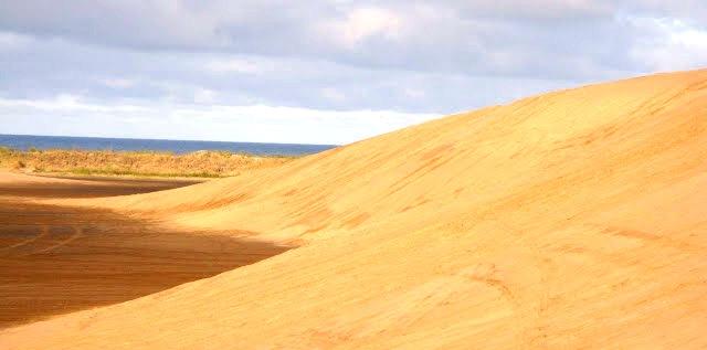 Travesía en las dunas de Cariló