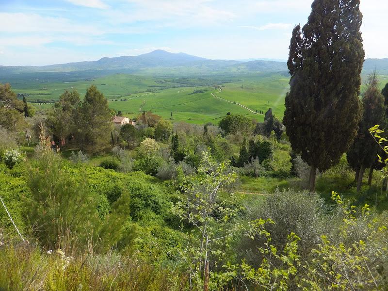 Lee más sobre el artículo Valle de Orcia en la Toscana