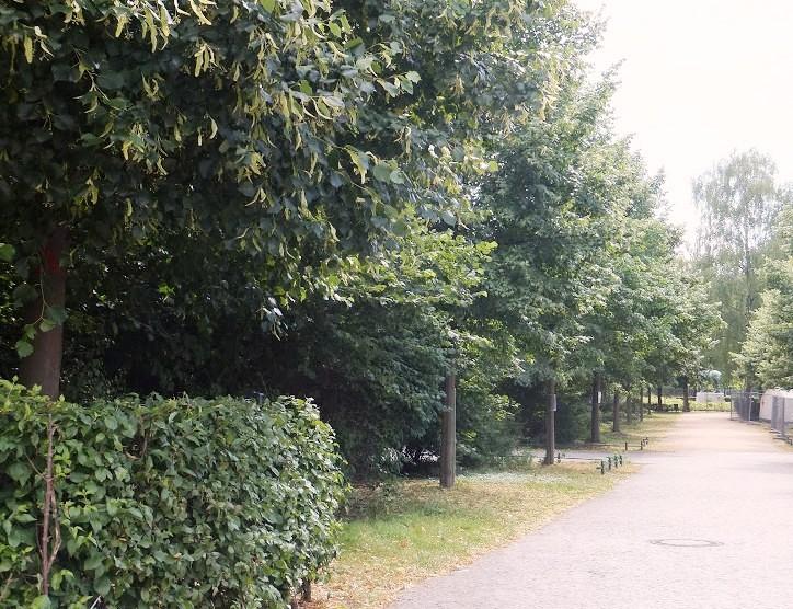 Tiergarten, Berlín